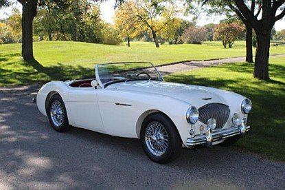 1955 Austin-Healey 100 for sale 100851790