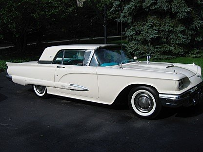 1959 Ford Thunderbird for sale 101006825