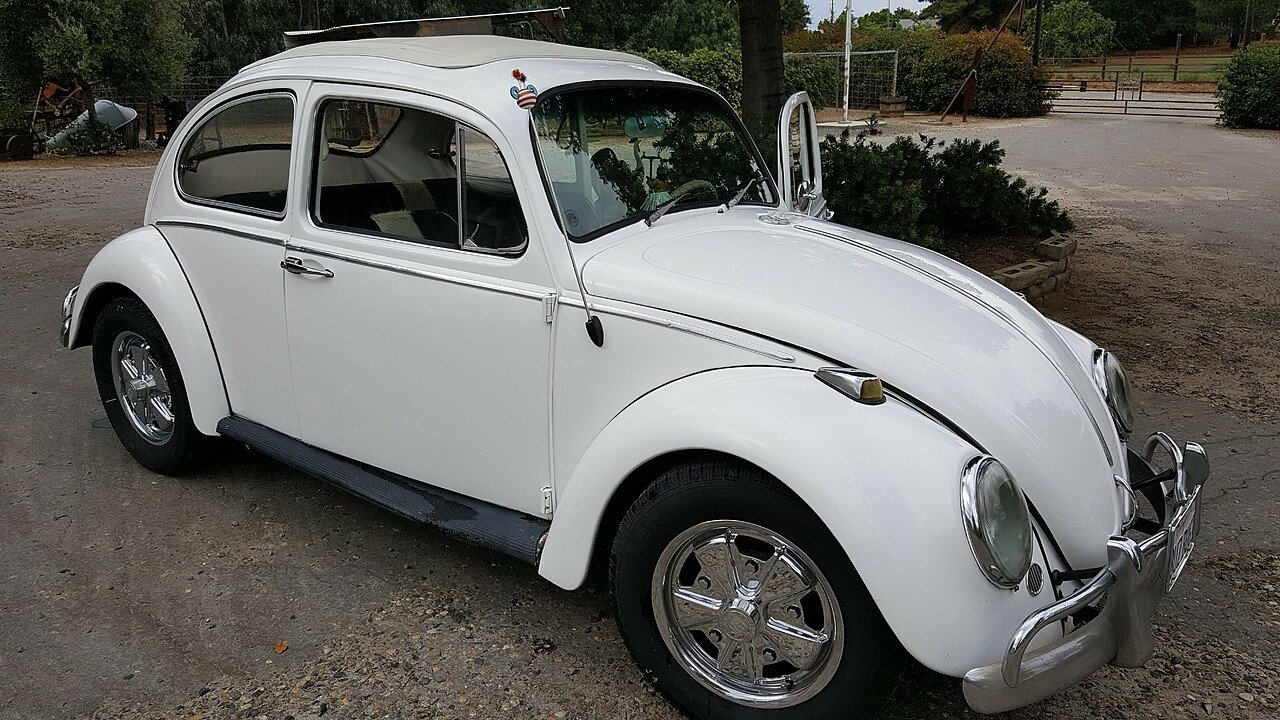 1963 Volkswagen Beetle for sale 100871883