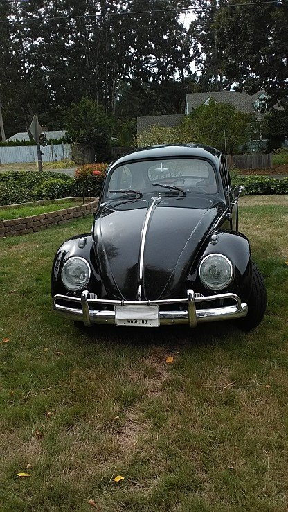 1963 Volkswagen Beetle for sale 101030823