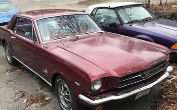 1964 Ford Mustang Coupe for sale 101033239