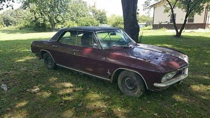 1965 Chevrolet Corvair for sale 100903798