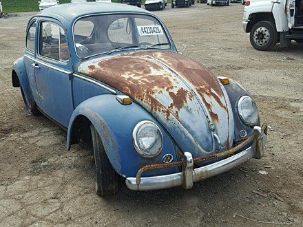 1965 Volkswagen Beetle for sale 101027837
