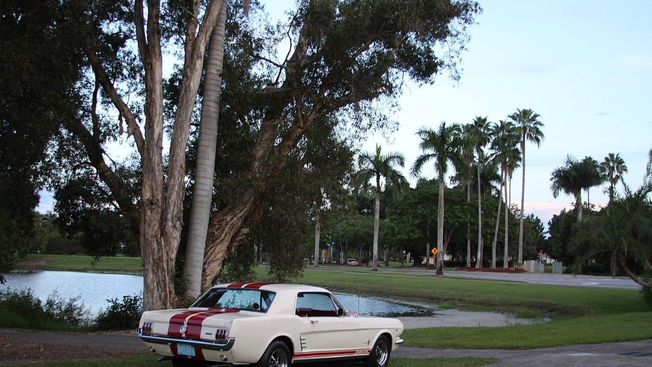 1966 Ford Mustang for sale 101042746