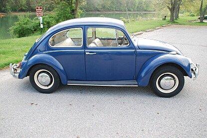 1967 Volkswagen Beetle for sale 100988962