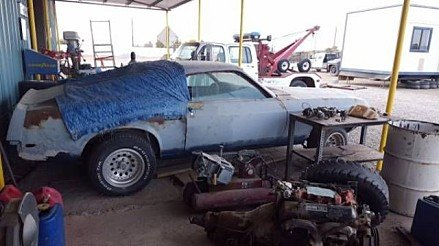 1969 Ford Mustang GT for sale 100959124