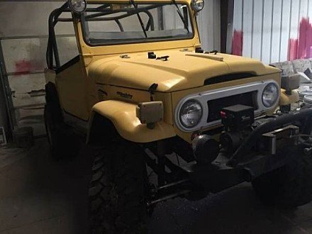 1969 Toyota Land Cruiser for sale 100825018