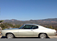 1972 Chevrolet Chevelle for sale 100861224