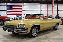 1973 Buick Centurion for sale 100754858