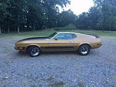 1973 Ford Mustang for sale 100913661