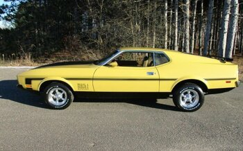 1973 Ford Mustang for sale 100923677