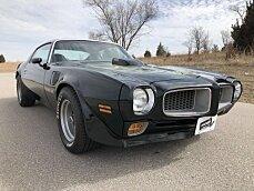 1973 Pontiac Firebird for sale 100984294