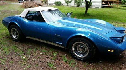1974 Chevrolet Corvette for sale 100838802