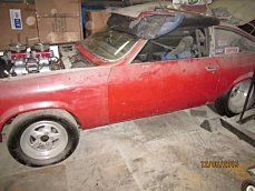 1974 Chevrolet Vega for sale 100802538