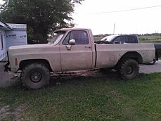 1975 Chevrolet C/K Truck for sale 100833854