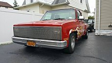 1975 Chevrolet C/K Trucks for sale 100782303