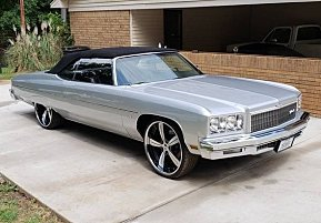 1975 Chevrolet Caprice for sale 101013940