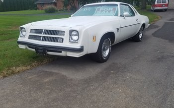 1975 Chevrolet Chevelle for sale 101053300