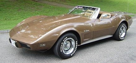 1975 Chevrolet Corvette for sale 101007441