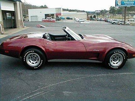 1975 Chevrolet Corvette for sale 101030052