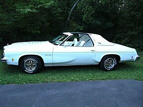 1975 Oldsmobile Cutlass for sale 101042402