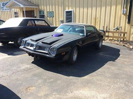 1975 Pontiac Firebird for sale 100906841