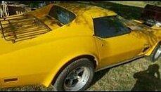 1975 chevrolet Corvette for sale 100884024