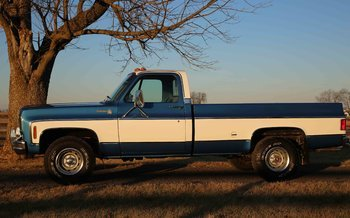 1976 Chevrolet C/K Truck Silverado for sale 101033589