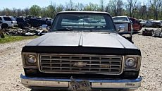 1976 Chevrolet C/K Truck for sale 100829334