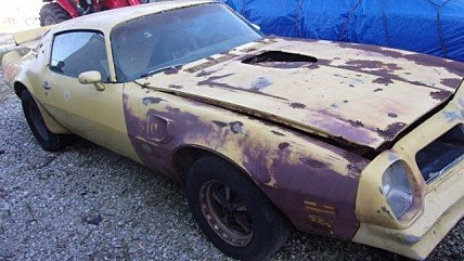 1976 Pontiac Firebird for sale 100898718