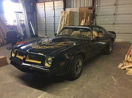 1976 Pontiac Firebird for sale 101042569