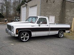 1977 Chevrolet C/K Truck for sale 100851252