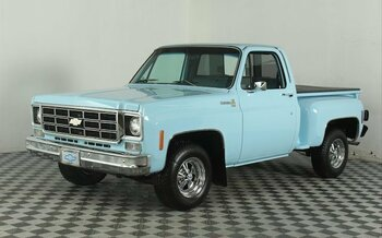 1977 Chevrolet C/K Truck for sale 100977629