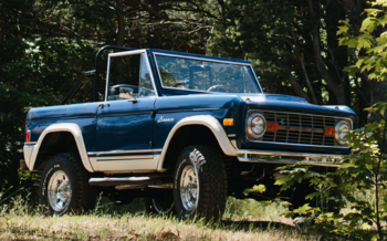 1977 Ford Bronco for sale 100915377