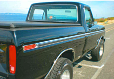 1977 Ford F150 for sale 100896395