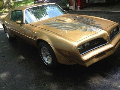 1977 Pontiac Firebird for sale 100829647