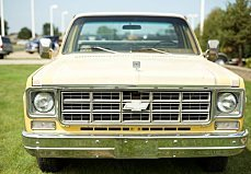 1978 Chevrolet C/K Truck for sale 100907500