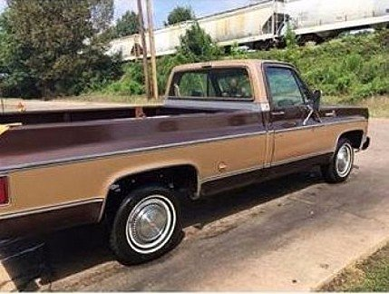 1978 Chevrolet C/K Truck for sale 100910181