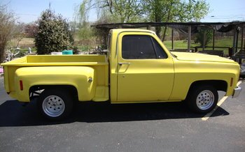 1978 Chevrolet C/K Trucks Cheyenne for sale 100841667