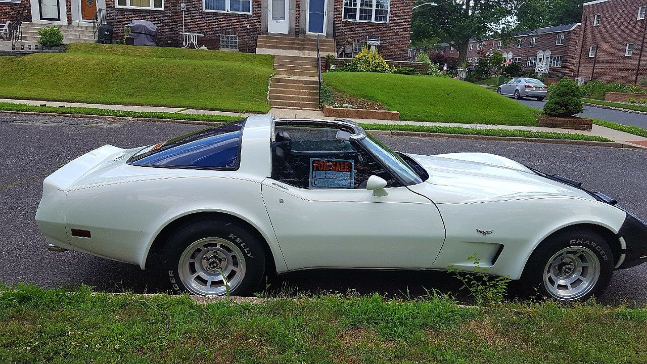 1978 Chevrolet Corvette for sale 100889513