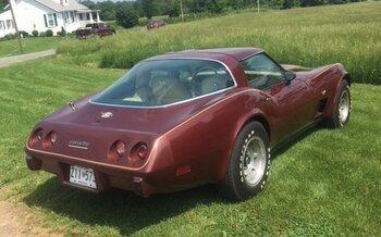 1978 Chevrolet Corvette for sale 101019355