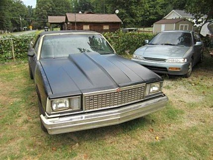 1978 Chevrolet El Camino for sale 100829596