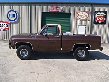 1978 chevrolet C/K Truck for sale 101001068