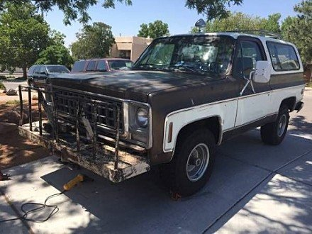 1979 Chevrolet Blazer for sale 100827173