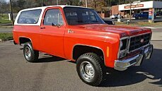 1979 Chevrolet Blazer for sale 100962078