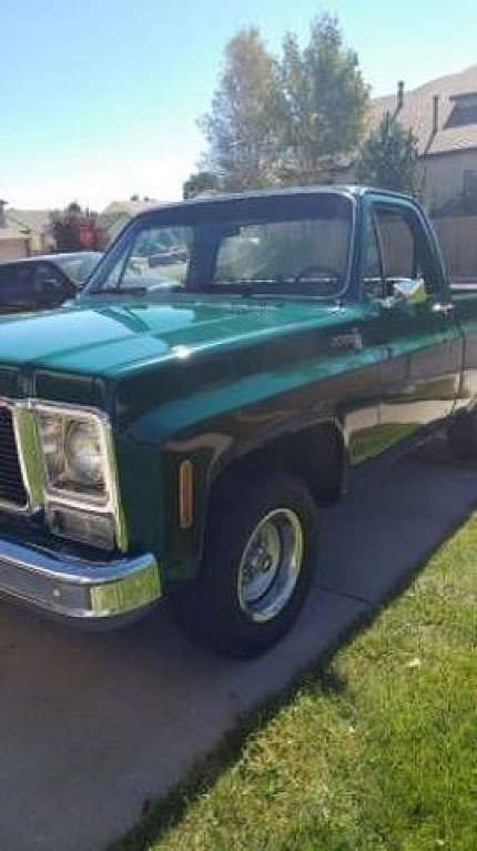 1979 Chevrolet C/K Truck for sale 100845700
