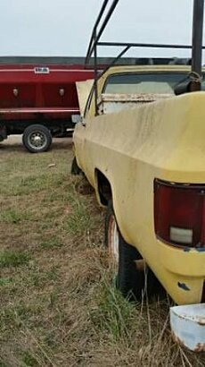 1979 Chevrolet C/K Truck for sale 100853734