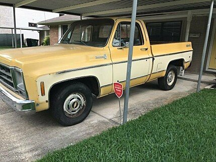 1979 Chevrolet C/K Truck for sale 100991920