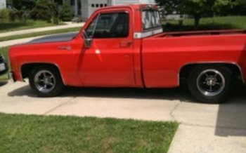 1979 Chevrolet C/K Trucks Cheyenne for sale 100839863