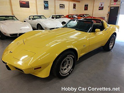 1979 Chevrolet Corvette for sale 100984827